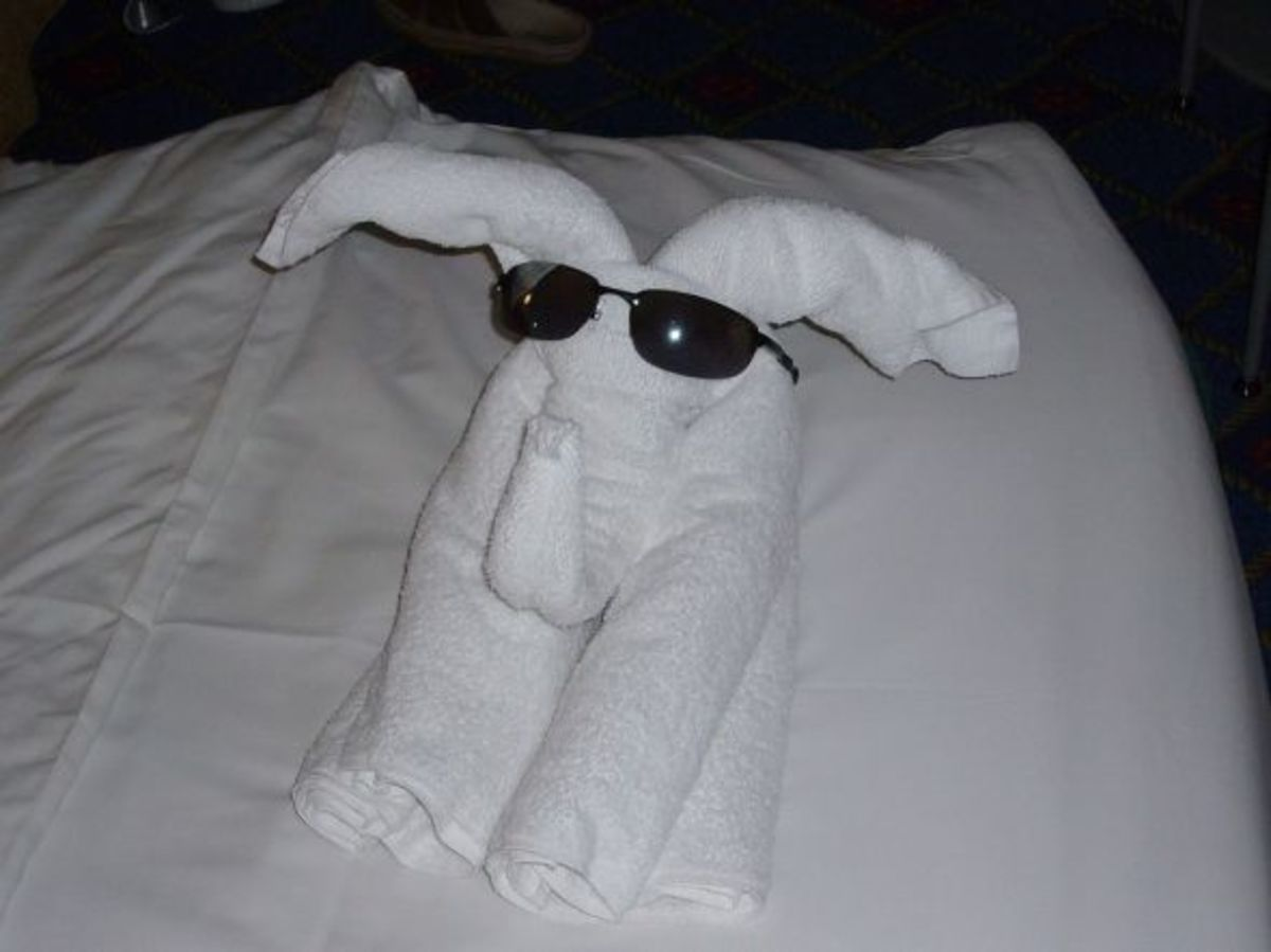 Which towel animal will we find on our bed tonight?