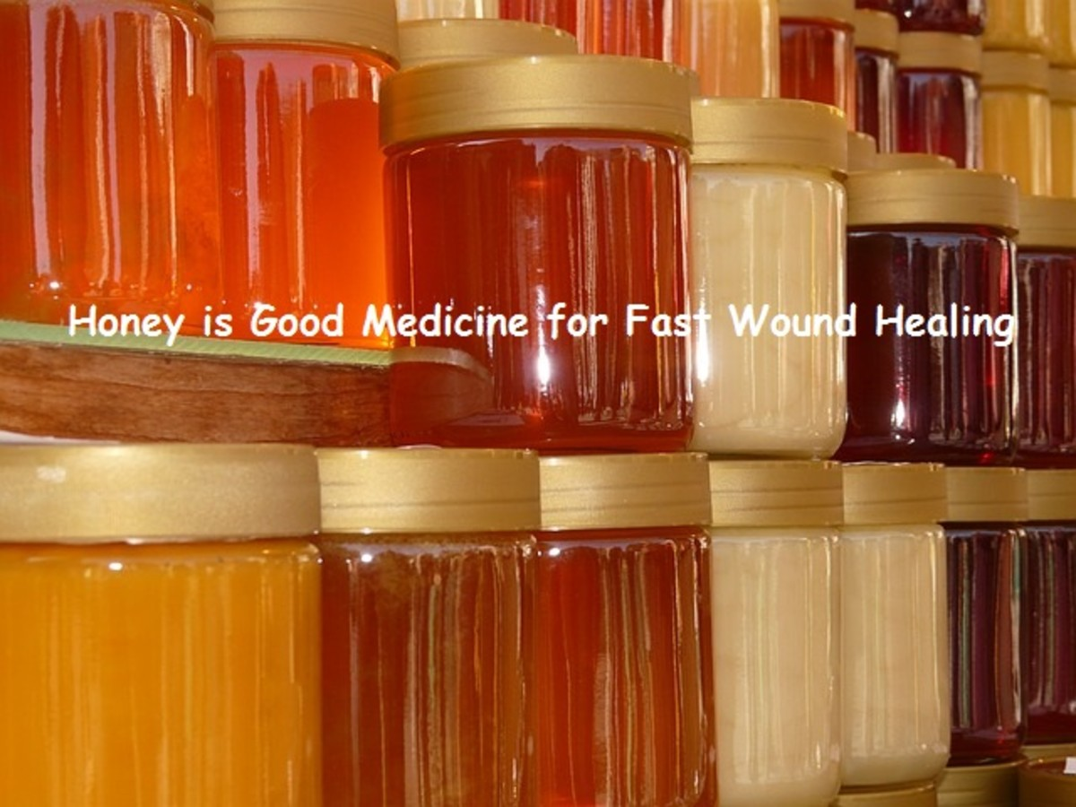 Honey as Medicine: Manuka Honey for Fast Natural Wound Healing