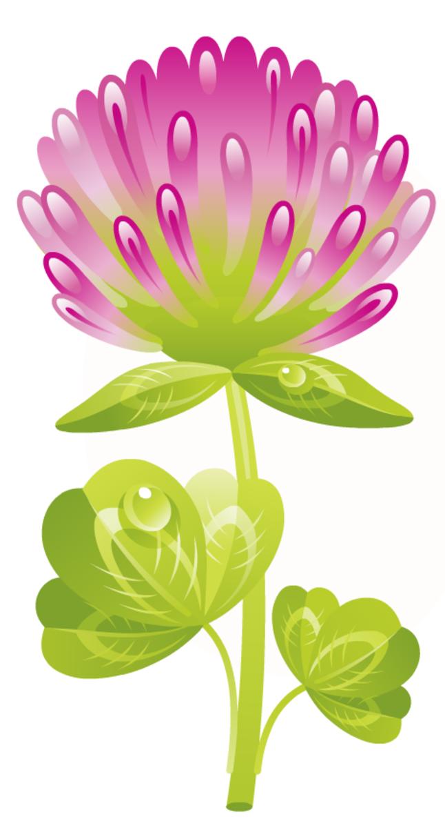free purple flower free flower clipart