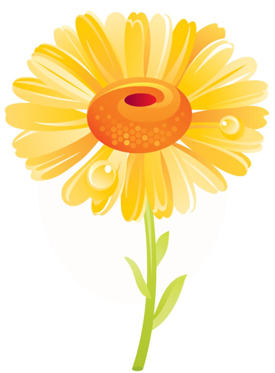 yellow daisy free flower clip art