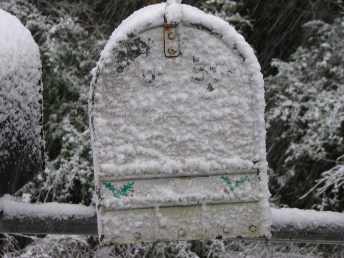 It doesn't snow often in Louisiana, but when it does it is an event. A holly covered mailbox in a winter wonderland.
