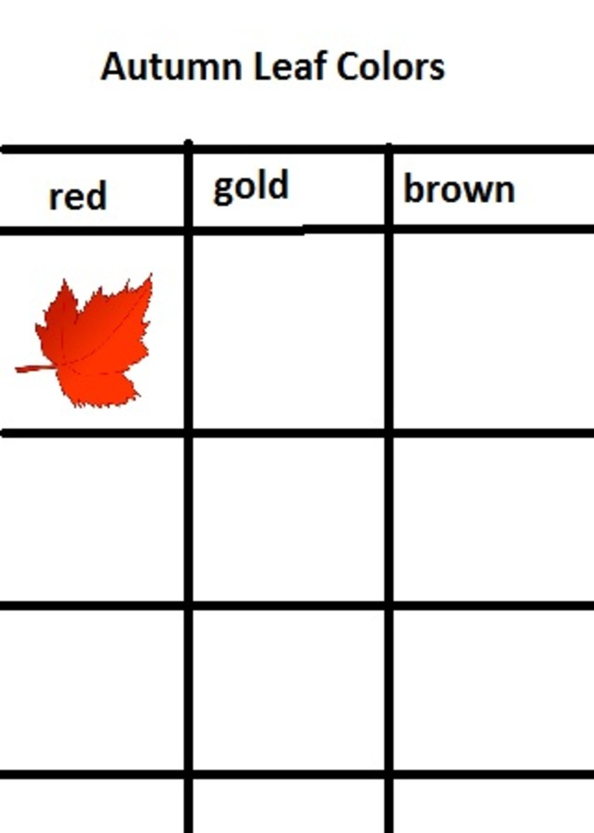 Create a Color Graph with Leaves