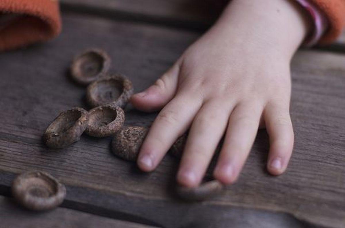 Counting Acorns