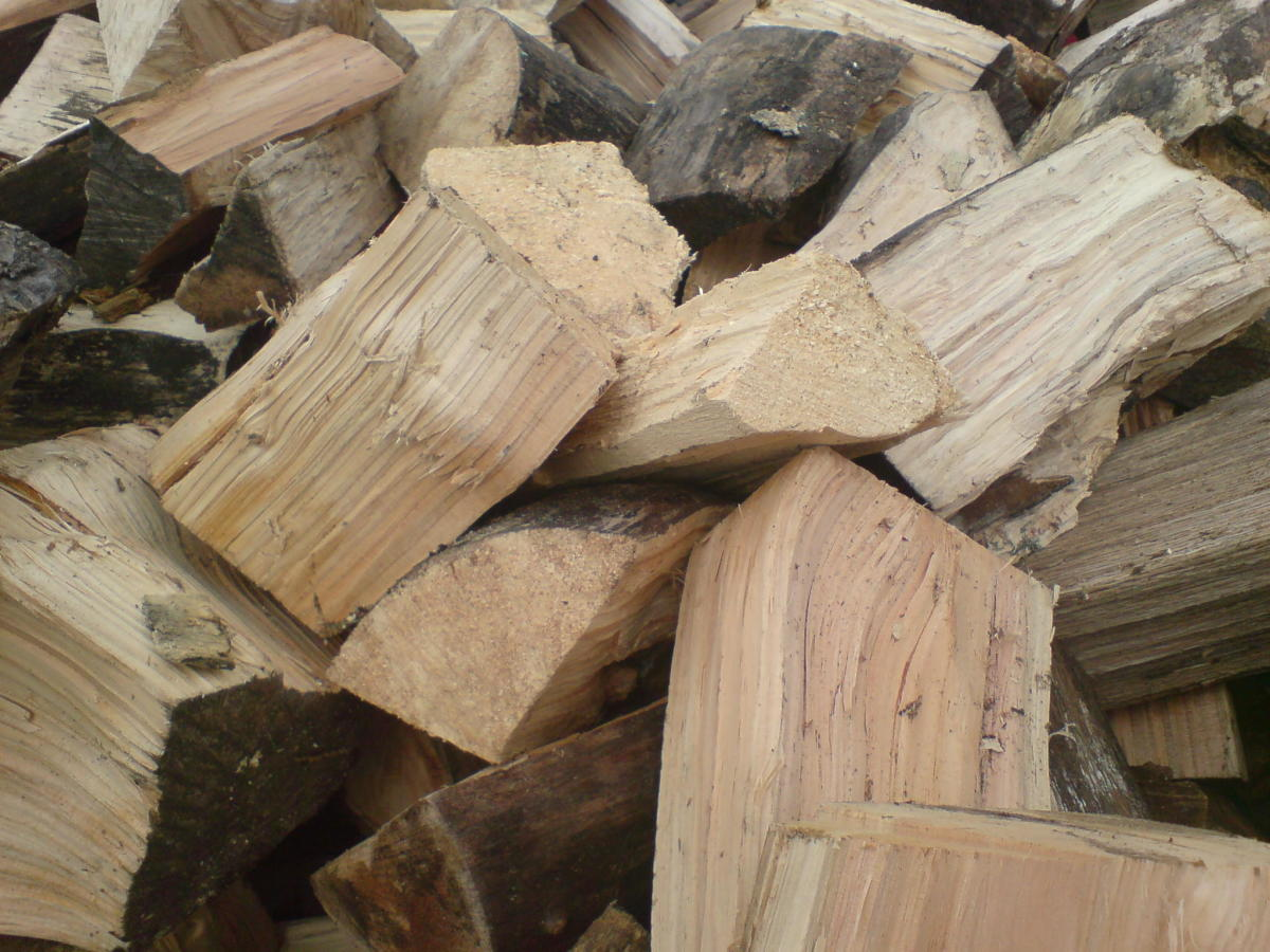 Split Logs Ready for Burning