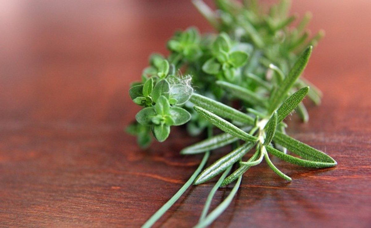 Flavorful Rosemary