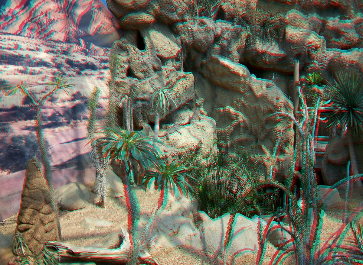 Desert Biome 3d anaglyph at the zoo in anaglyph 3D. Use red/blue glasses
