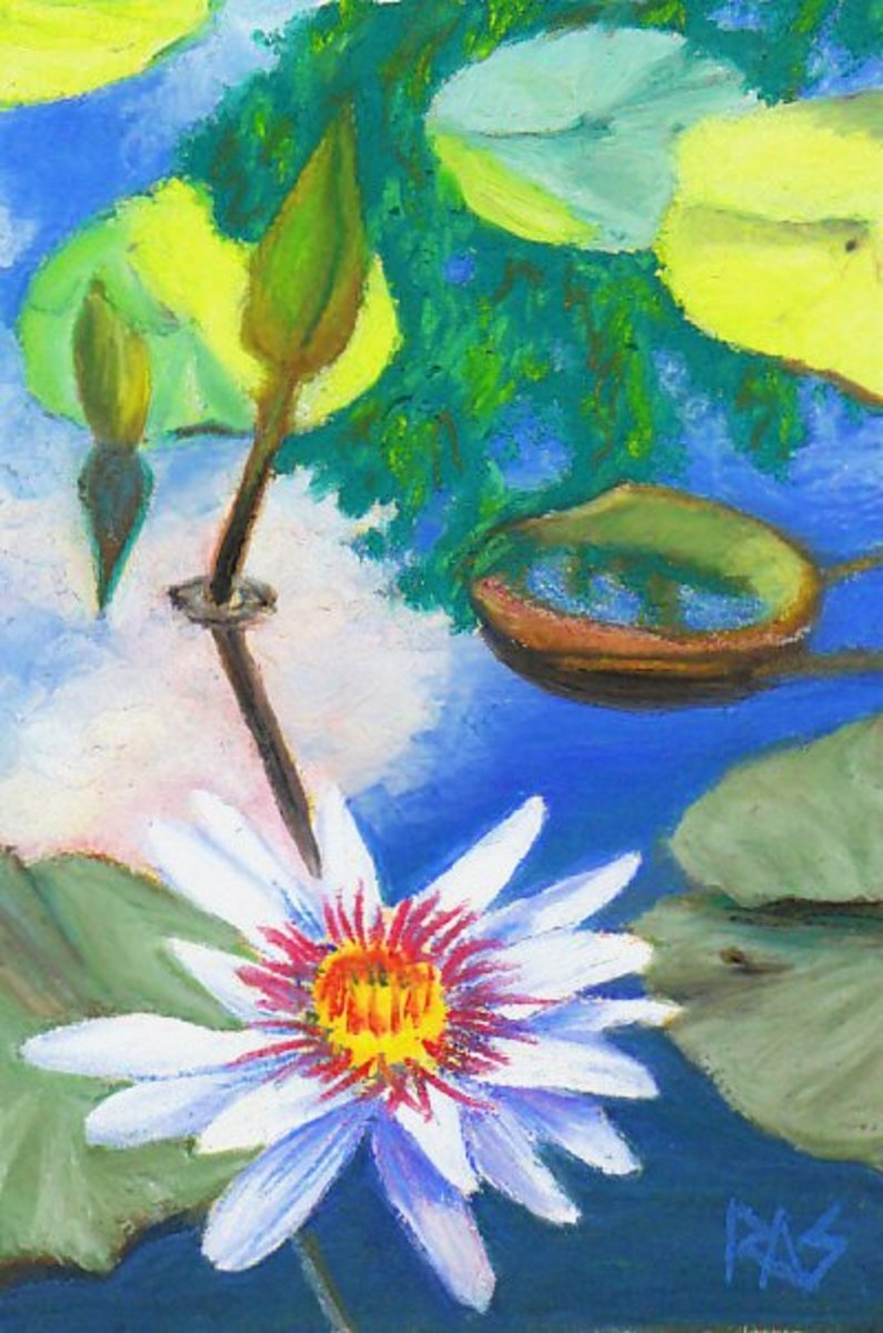 Water Lily Pond by Robert A. Sloan, Caran d'Ache Neopastel on Rich Beige Colourfix sanded pastel paper.