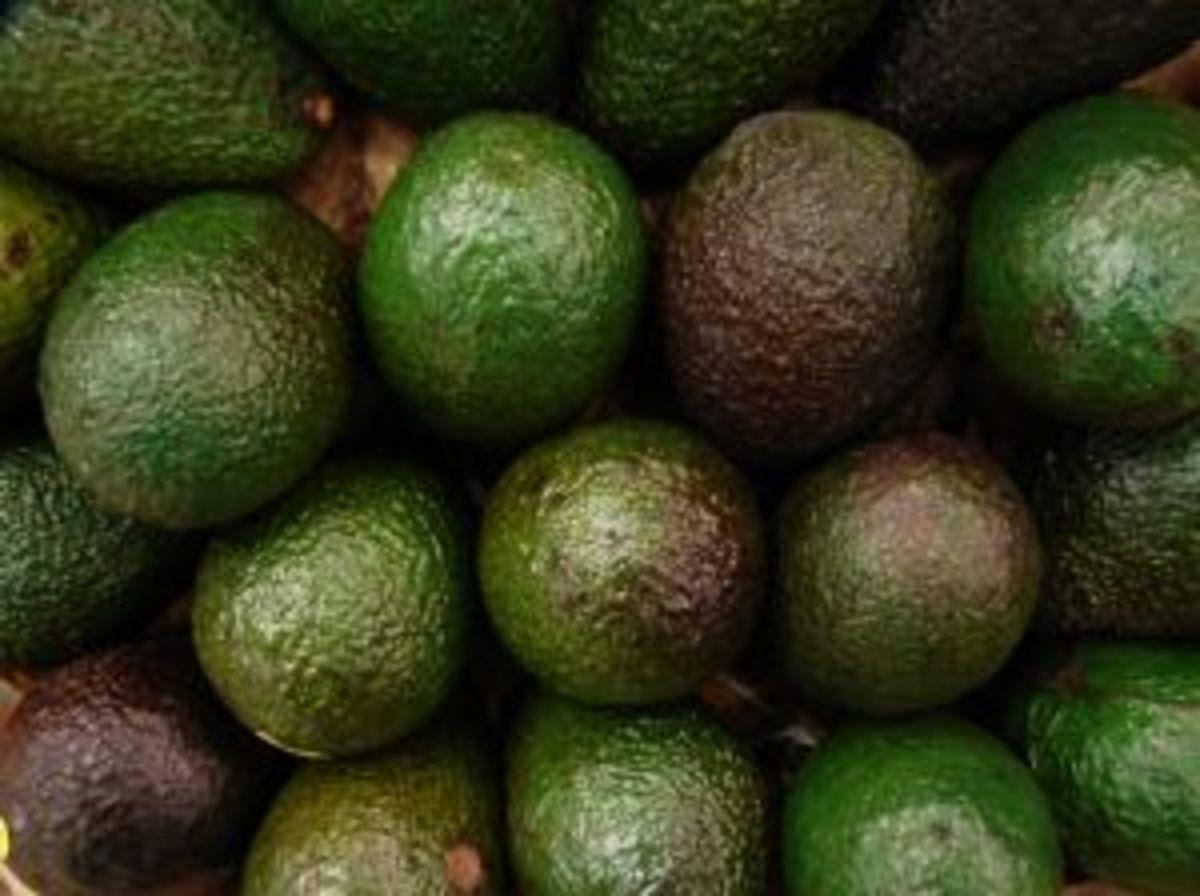 Avocados go really well with huevos rancheros