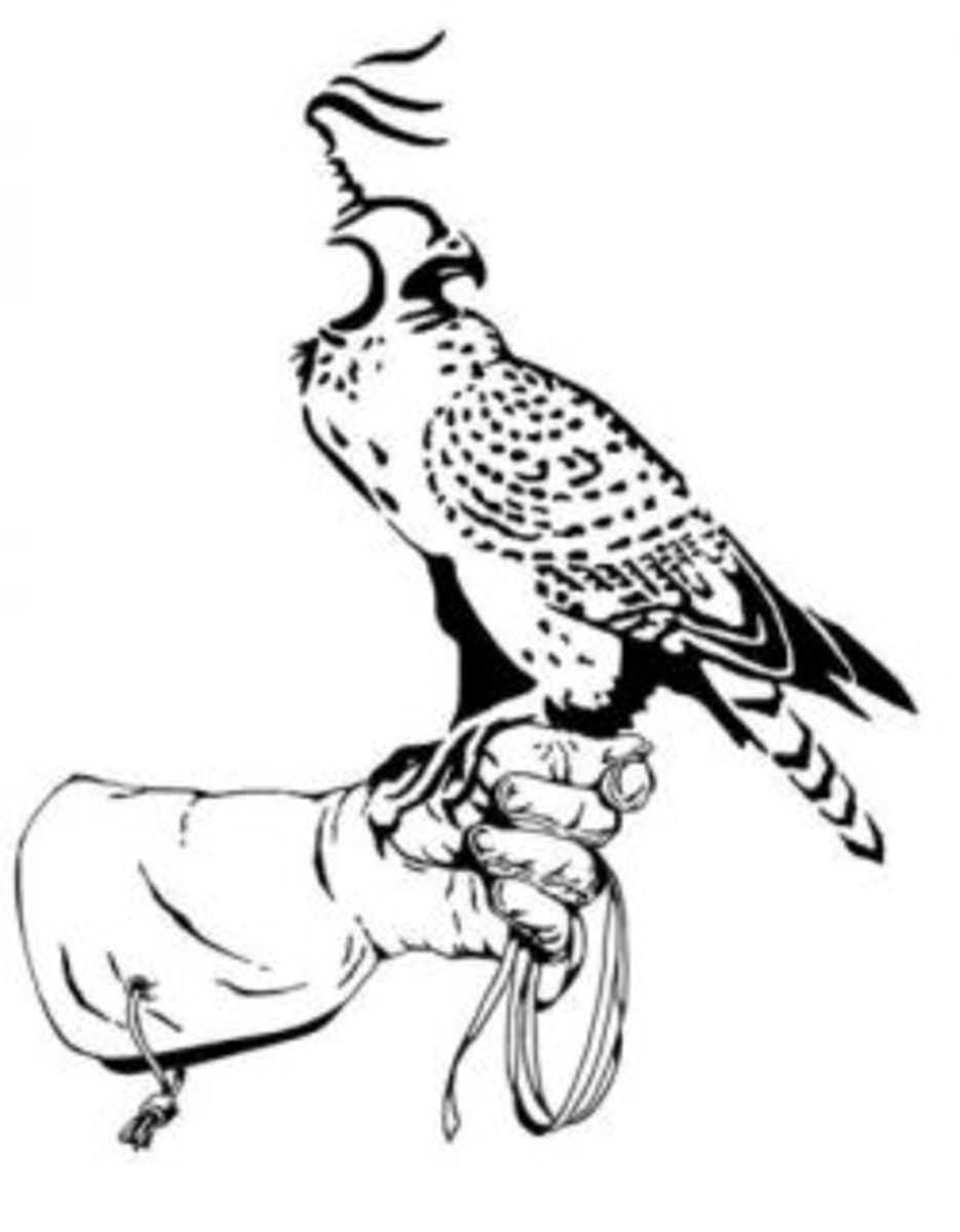 Making your own falconry equipment