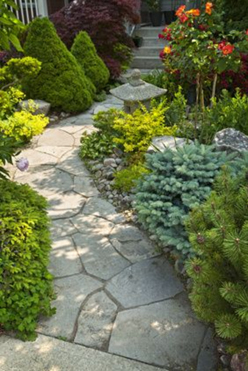 Japanese flagstone path