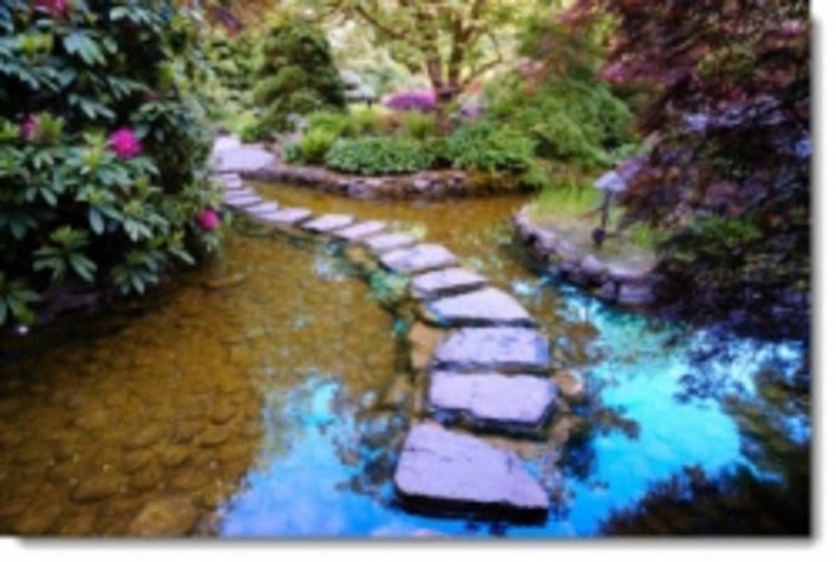 Japanese Path Pond Stepping Stones
