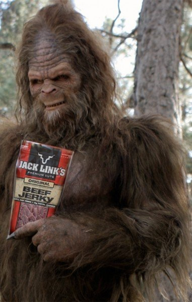 I always wondered if the furball liked beef jerky