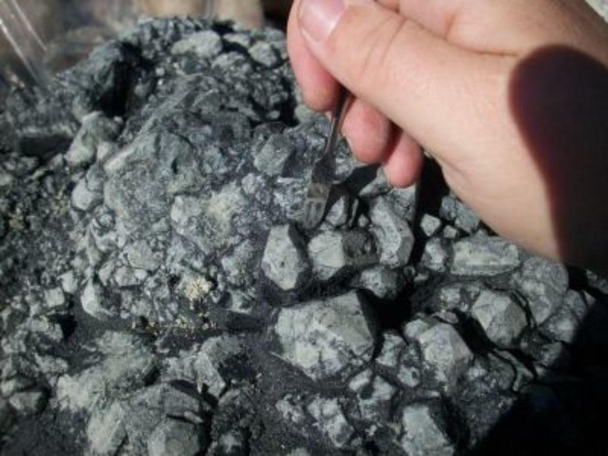 Scraping Mud Off of Hanksite Crystal