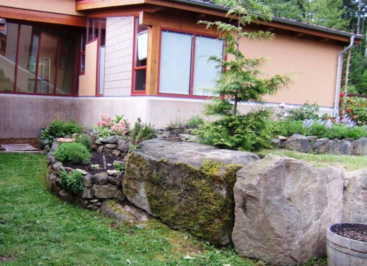 Natural rock, retained to make a corner of the raised bed.
