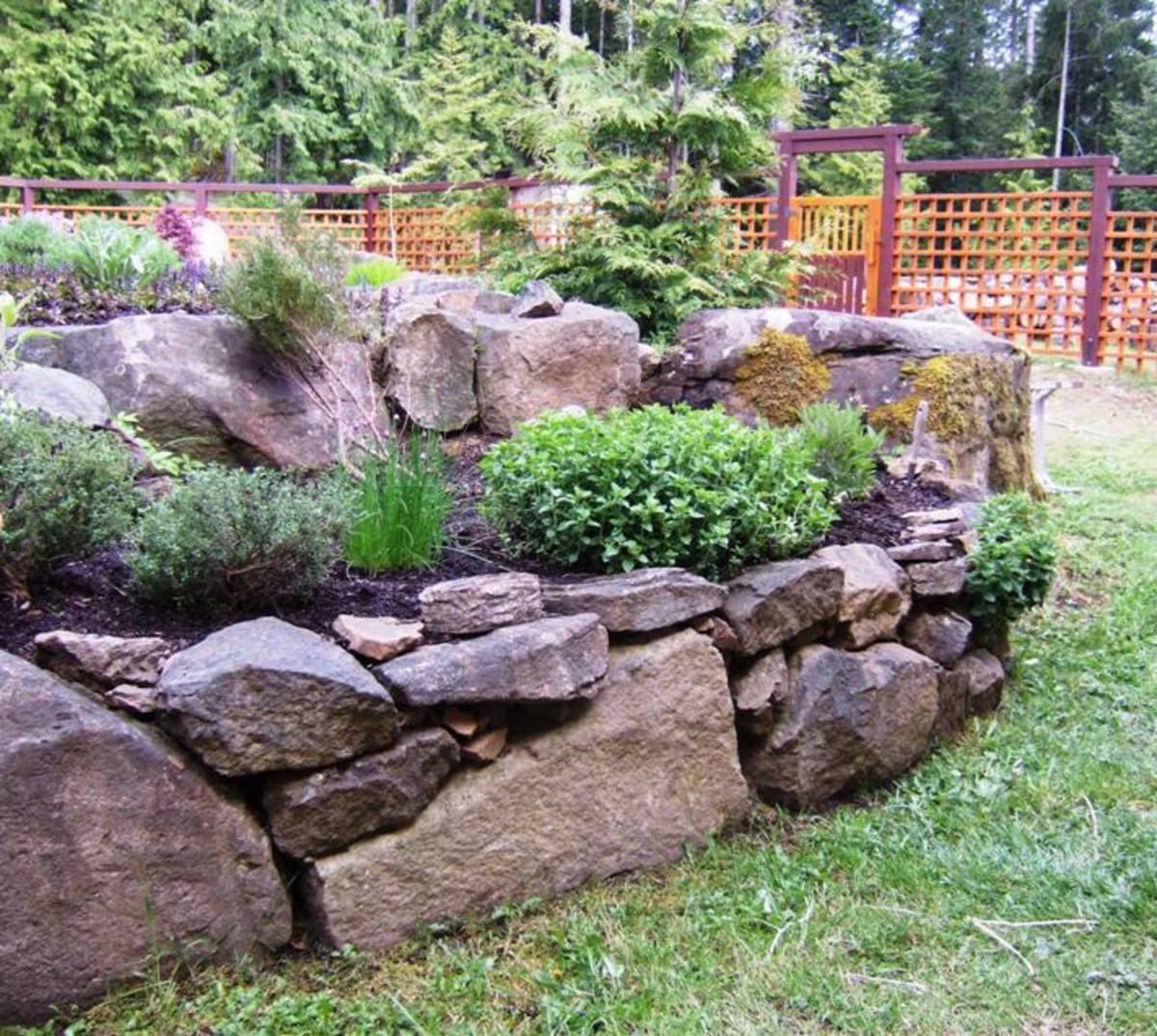 Raised Herb Garden Design Photograph My raised bed herb ga
