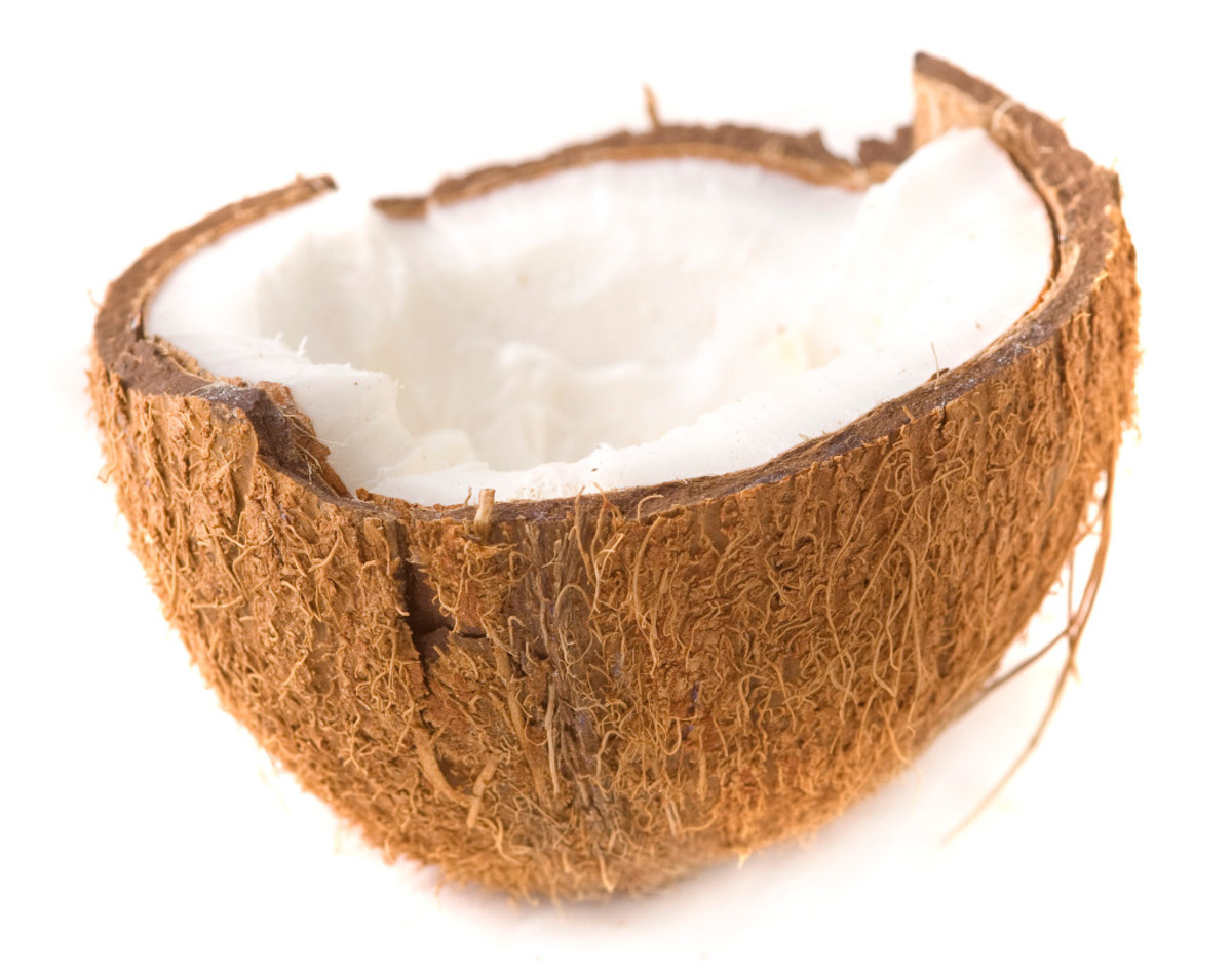 """Coconuts are fantastic. For $2.00 or less you get delicious fresh coconut meat AND two """"coco huts"""" for your hermit crabs!"""