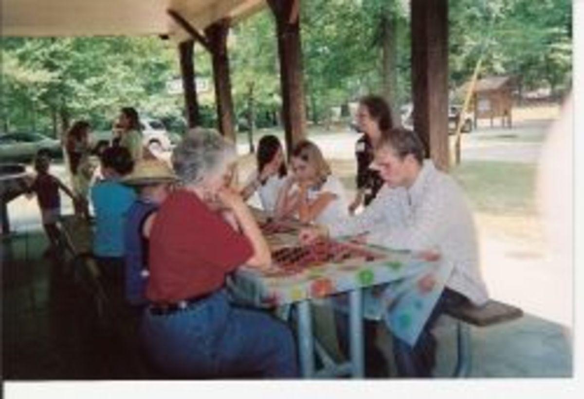 picnic100