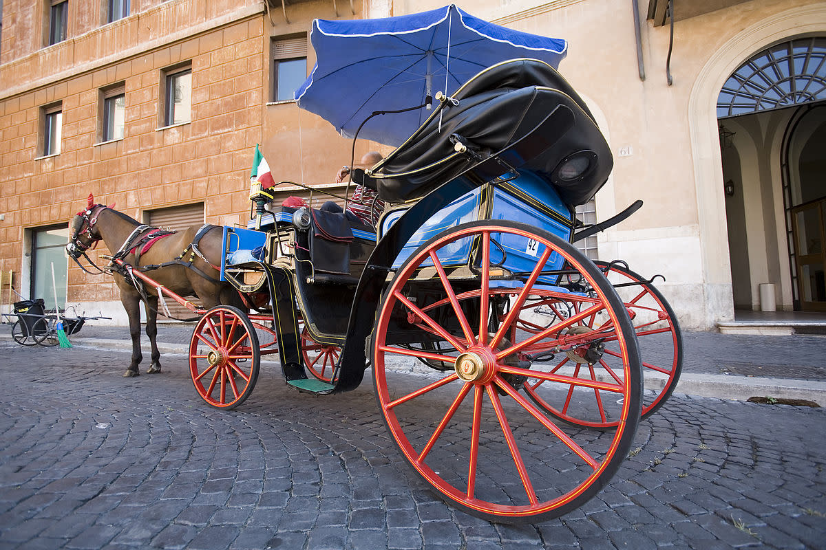 Horse-Drawn Carriage - Rome
