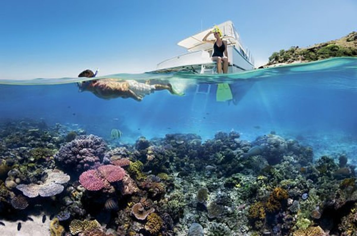 Reef Snorkelling on the Great Barrier Reef.