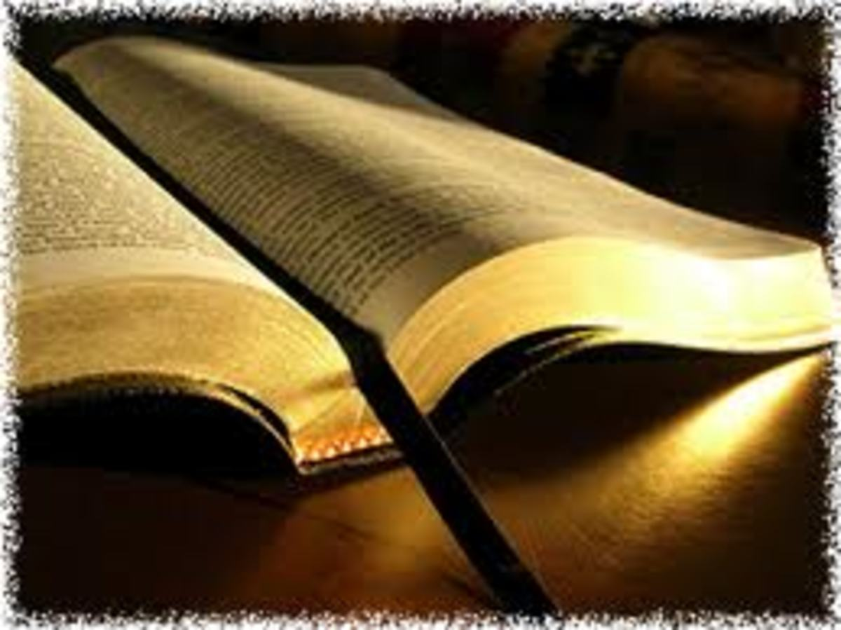 Discover The Book (Part 3. God's Warning To The World)