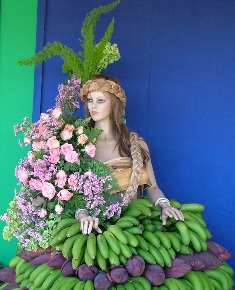 Festive Fruit And Flower Displays