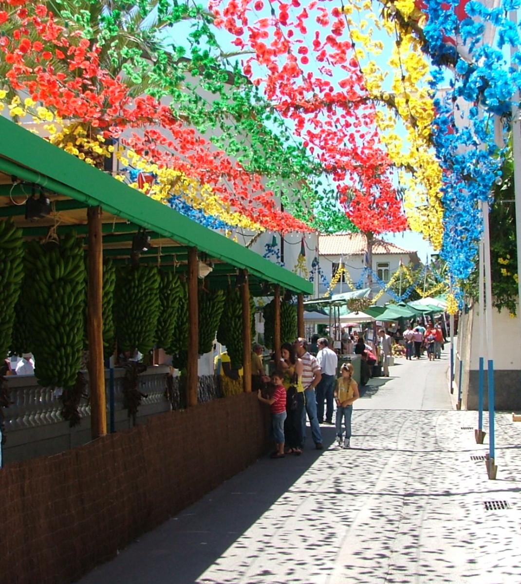 Madeiran Festival Flowers