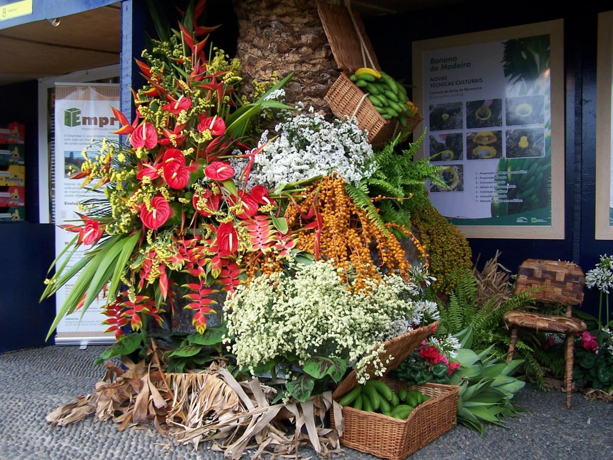 Flamingo Flower Display