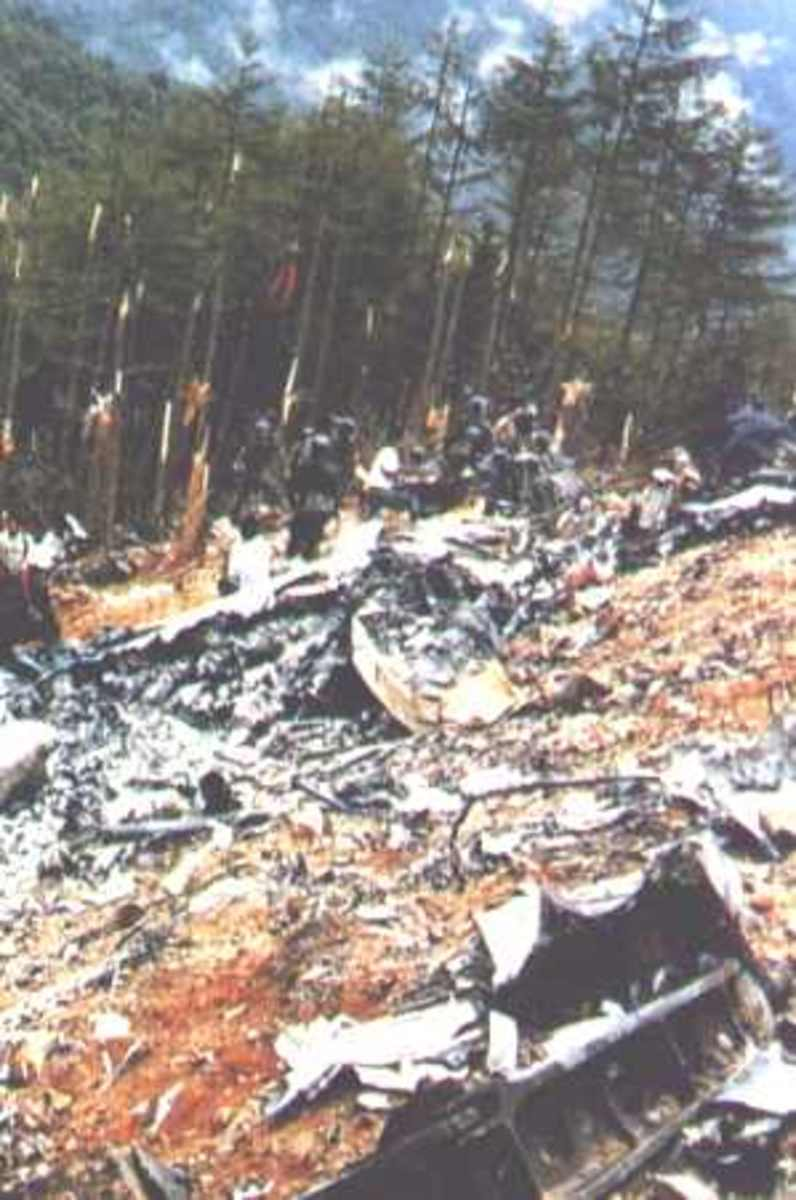 The wreckage of a Japan Airlines Boeing 747 that crashed on Mt. Osutaka, Japan.  Five-hundred twenty people out of 524 aboard were killed.