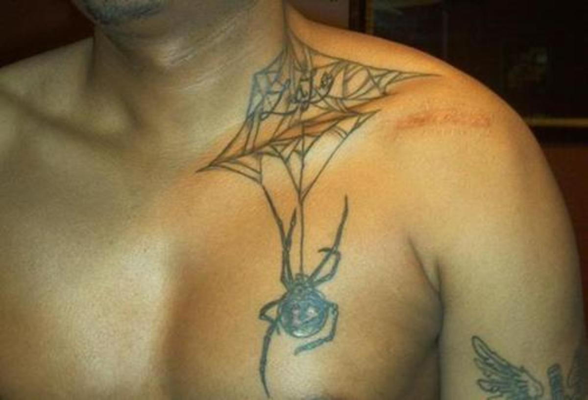 Spider Web and Spider Tattoo on Chest
