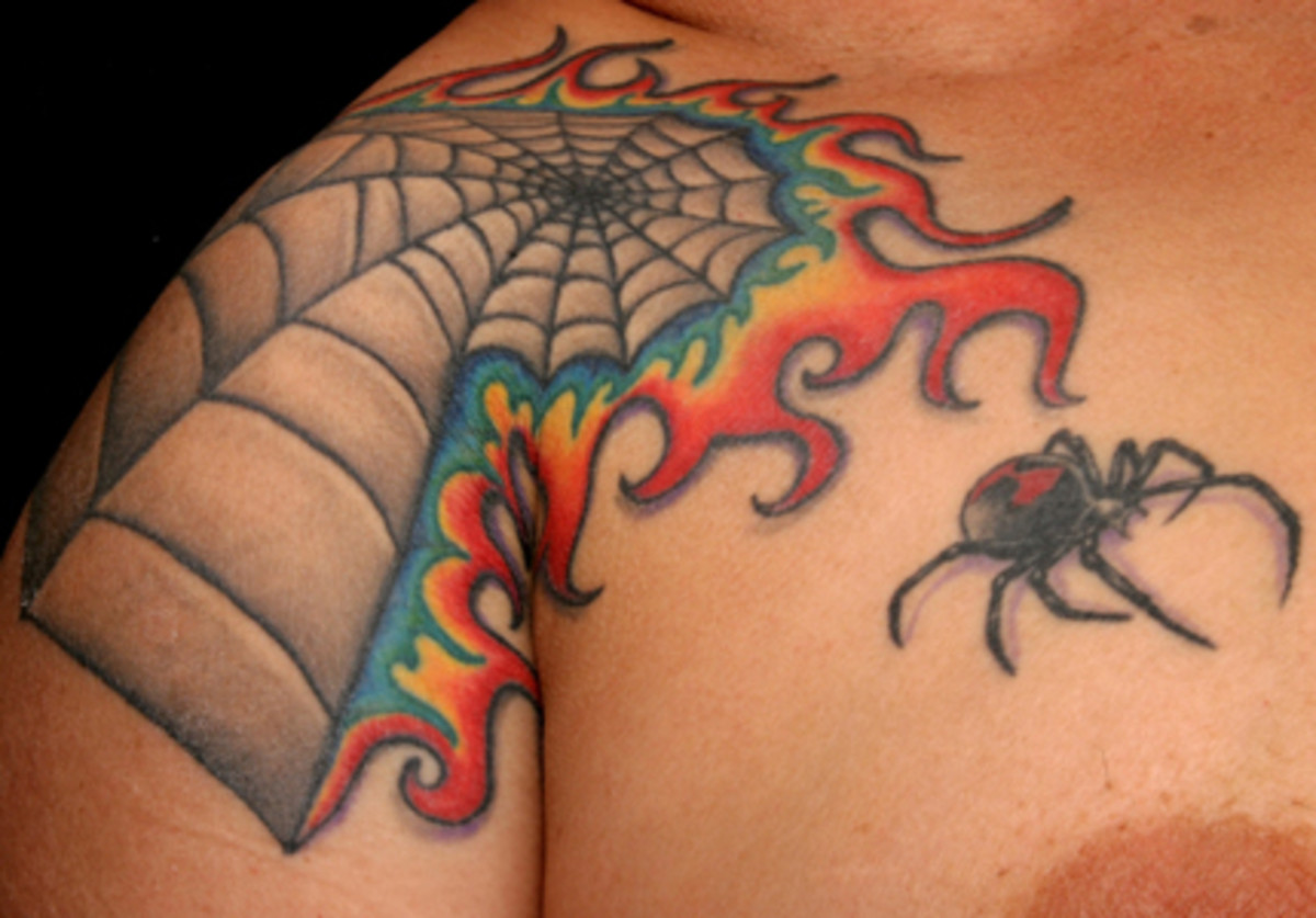 Now here's a spider web tattoo I really like as far as a standalone without