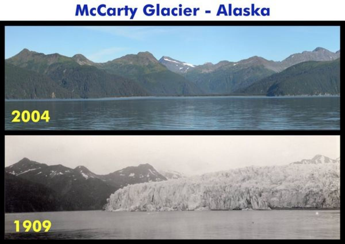 The ice melted from McCarty Glacier, on the other hand, has contributed its lost mass to the global sea level rise measured over the last century.  Image courtesy Robert Rohde & Global Warming Art.