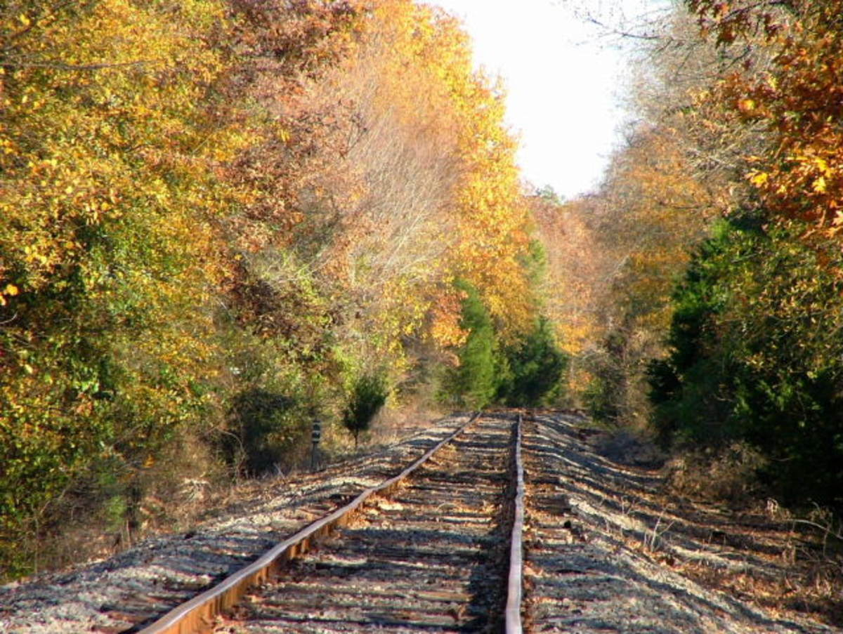 Rock Island-Pacific track near Mickles, AR, November 11, 2006.  Image courtesy Frederick Garcia.