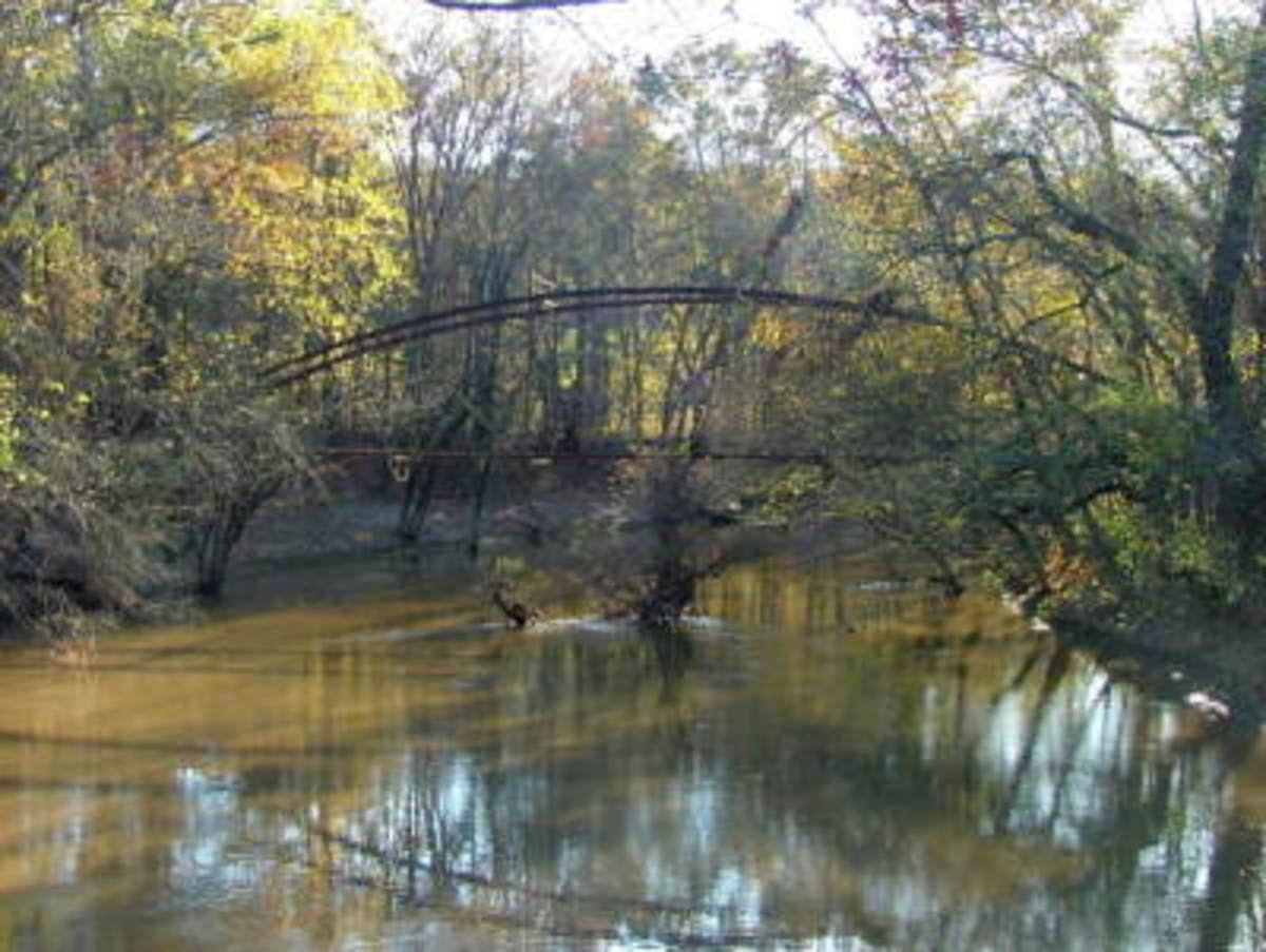 Danville-Mickles Bridge, Arkansas, on November 11, 2006.  Image courtesy Frederick Garcia.