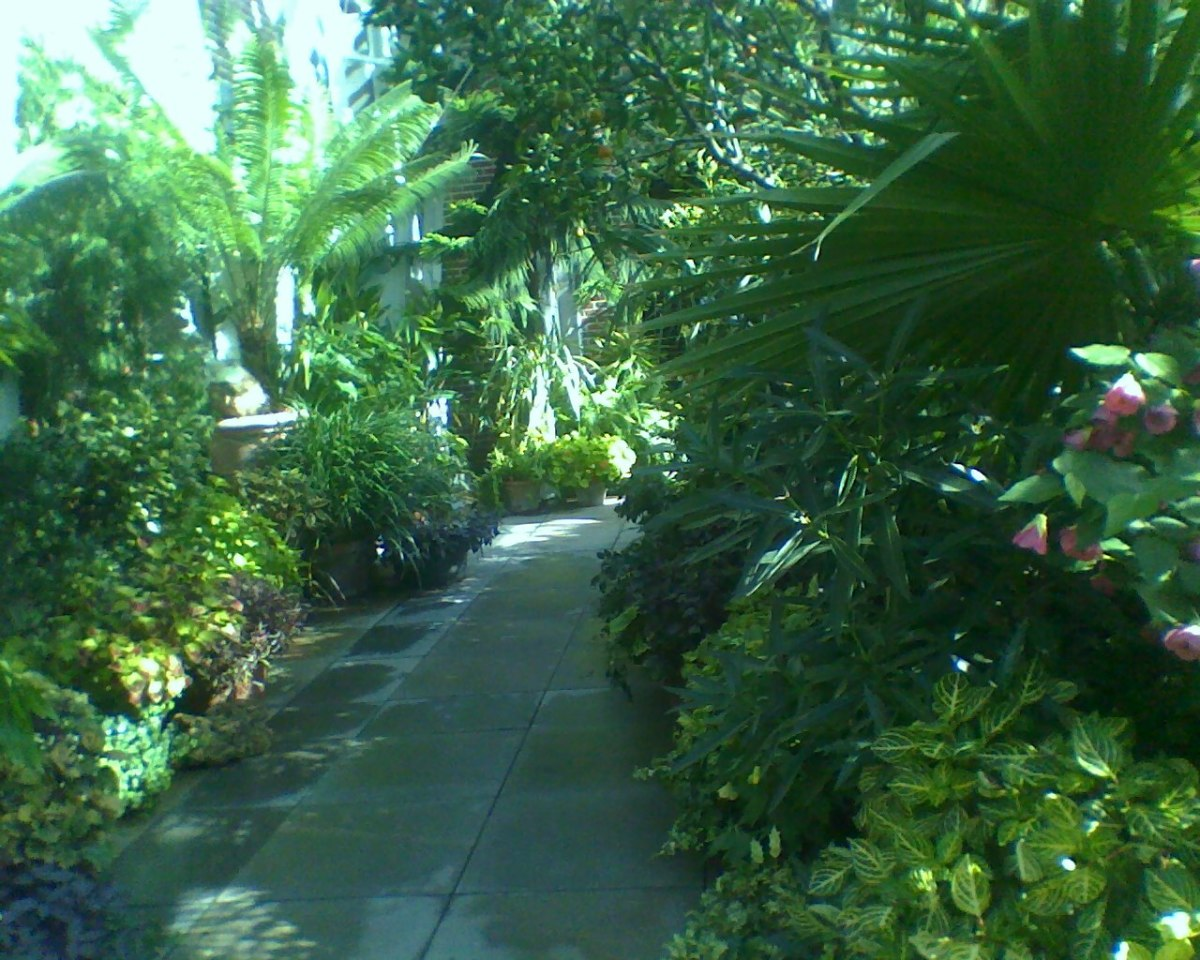 The Orangerie at Tower Hill Botanical Garden