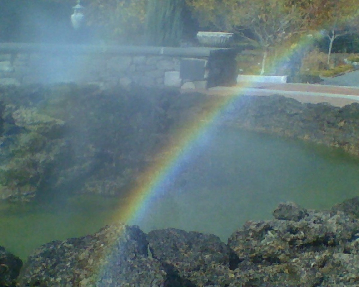 Rainbow captured in the Primodial Pool at Tower  Hill Botanical Garden