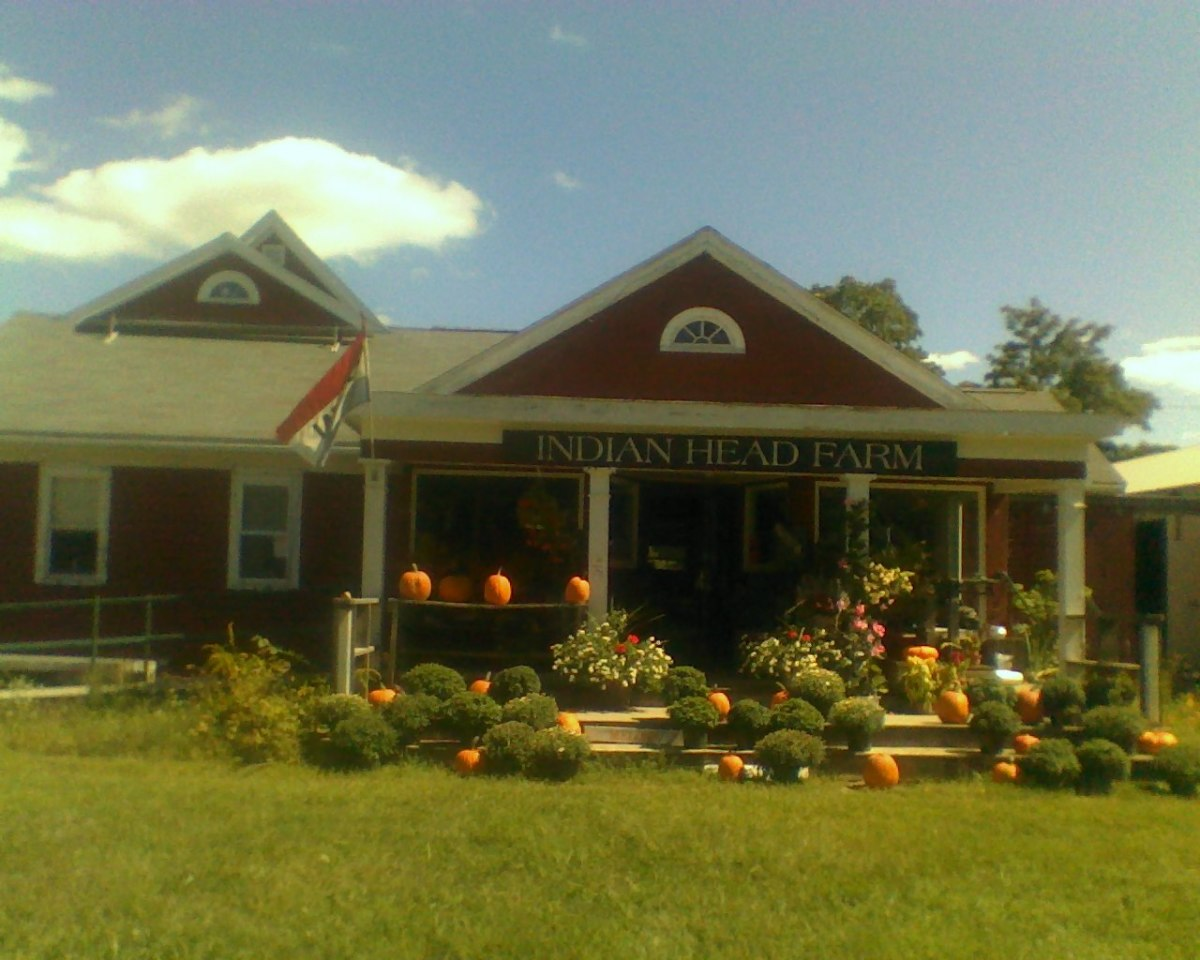 Indian Head Farm, where Cosette and Mama joined edible plants specialist, John Root