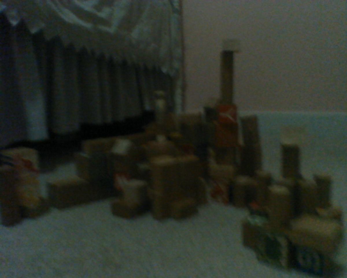 City of blocks made by Cosette and Mama