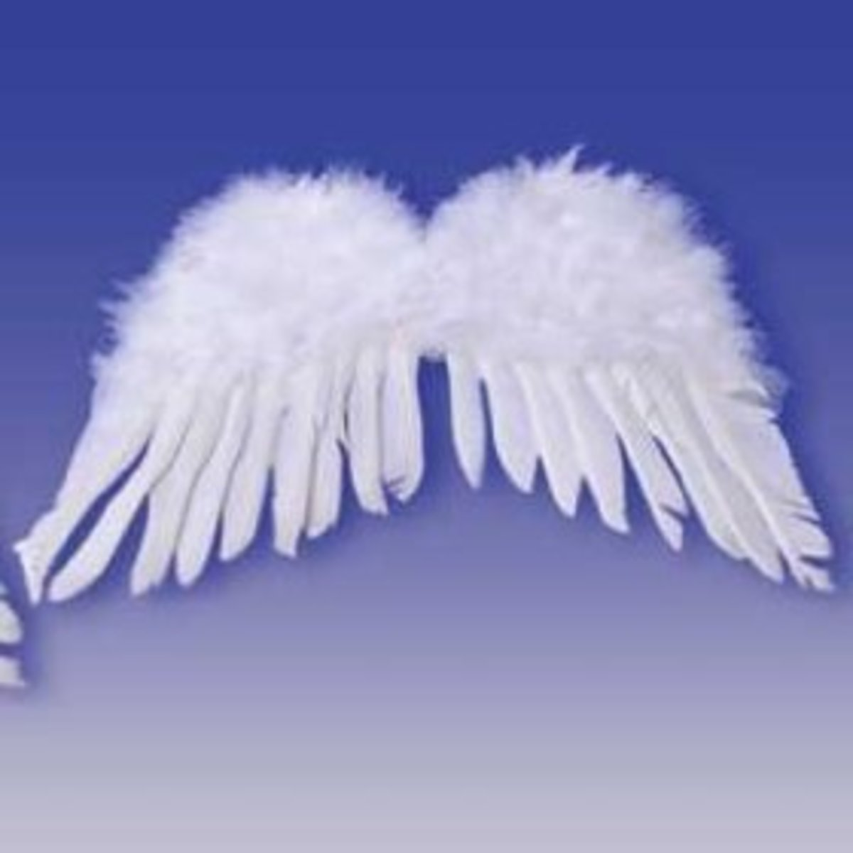 Angel wings can transform a tutu wearer into an angel, a swan, or even a flying pig!