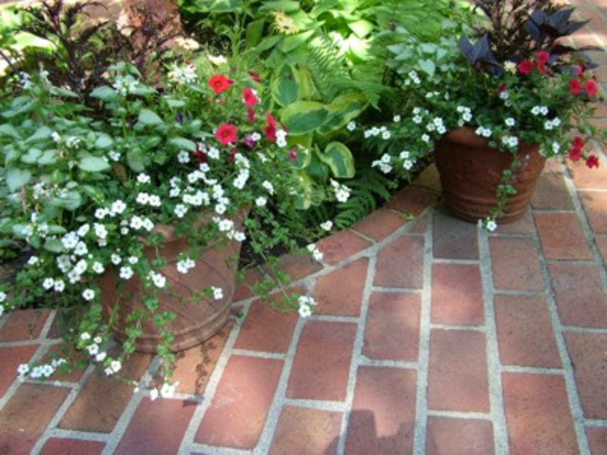 Backyard renovations how to build a patio hubpages for Red brick patio ideas