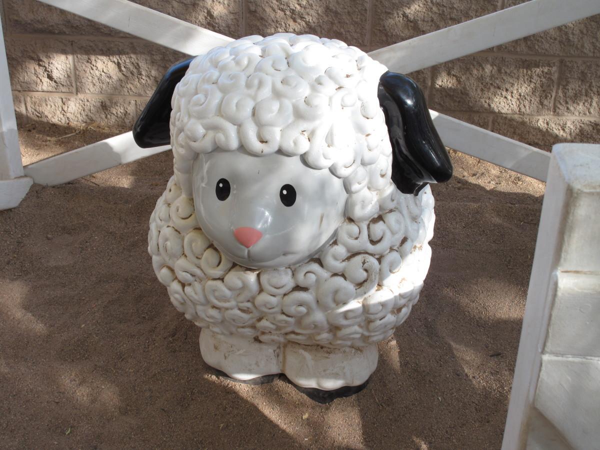Kid-size Little People lamb at the Phoenix Zoo.