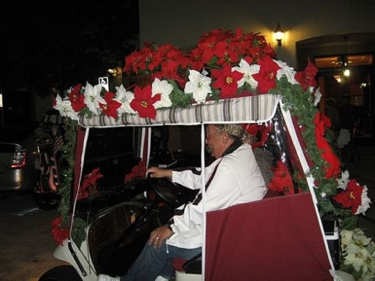 Decorating the cart for Christmas with poinsettias.