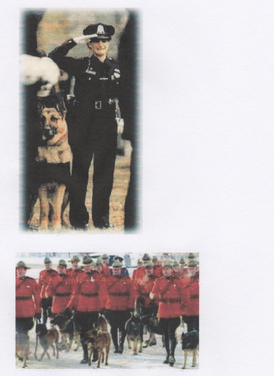 Two funerals for fallen officers and their dogs in Canada. Canine operations are extremely dangerous for both dog and handlers, with a significantly higher rate of injury and death.