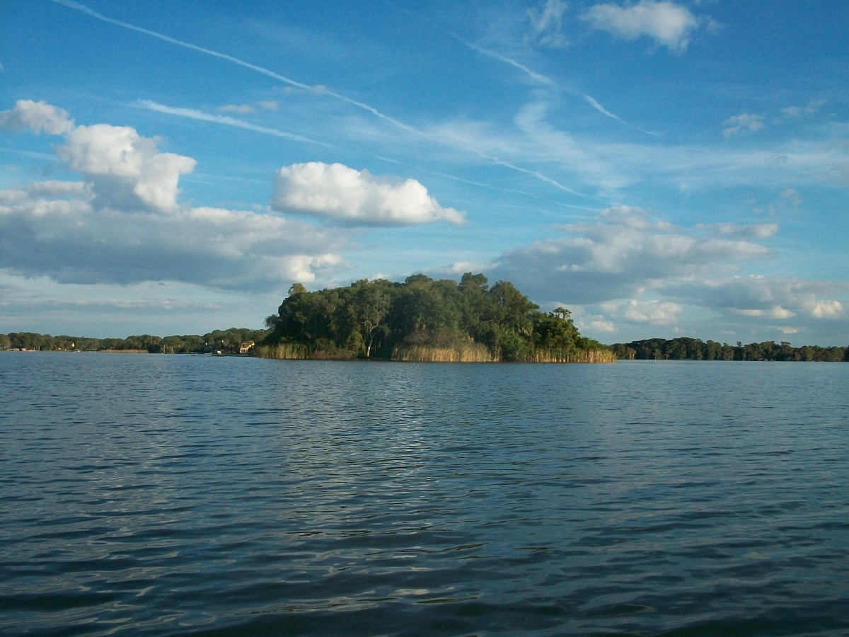 Island on Lake Maitland