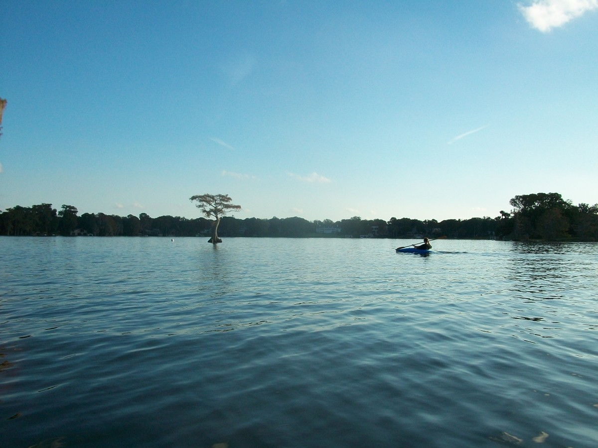Kayaking Lake Maitland