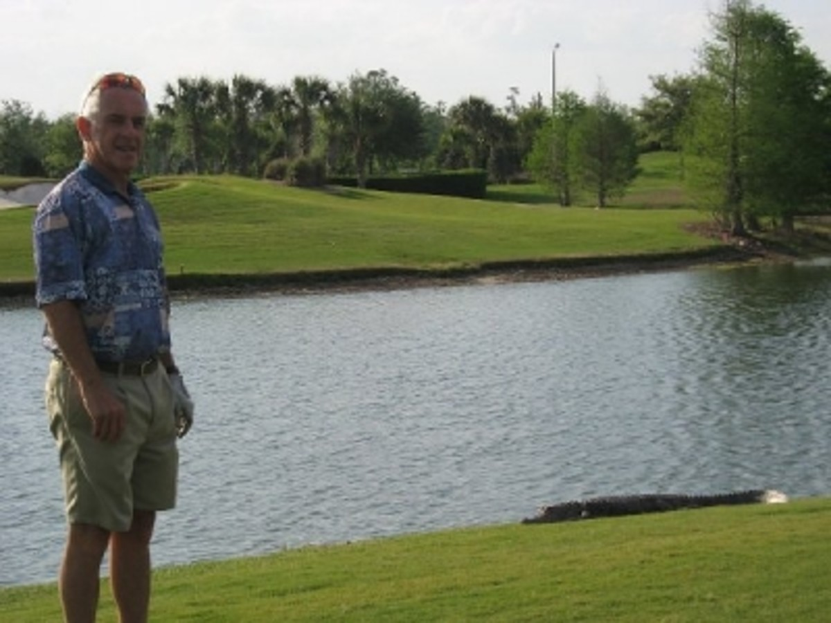 Our Friend, Herb, on the Golf Course with an Alligator Nearby