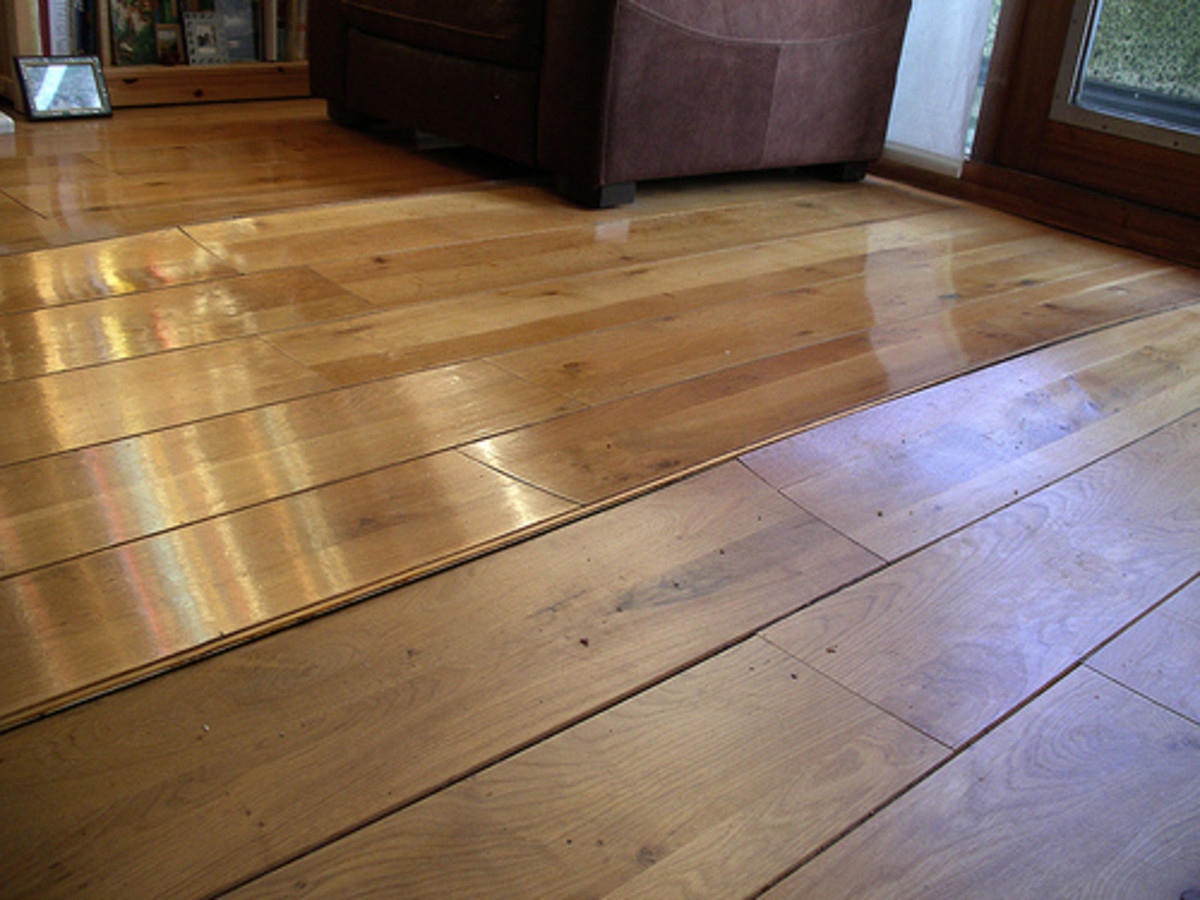Water Damaged Hardwood Floors: Should you Worry about Mold?