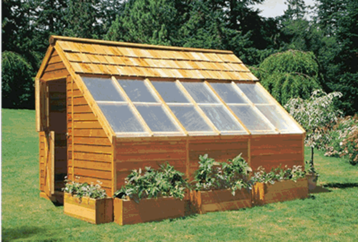 homemade-backyard-greenhouses