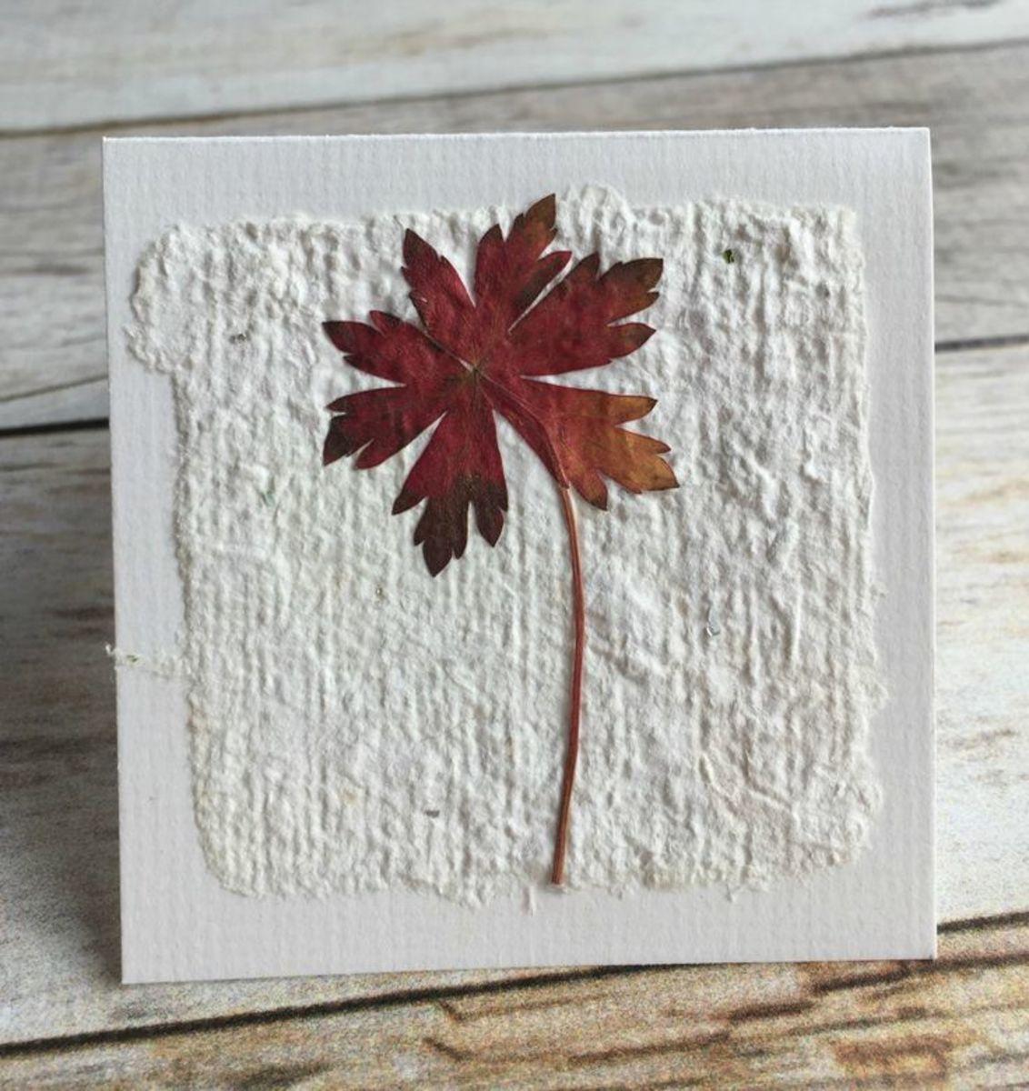 paper-casting-amazing-art-paper-sculpture-allen-betty-eckman