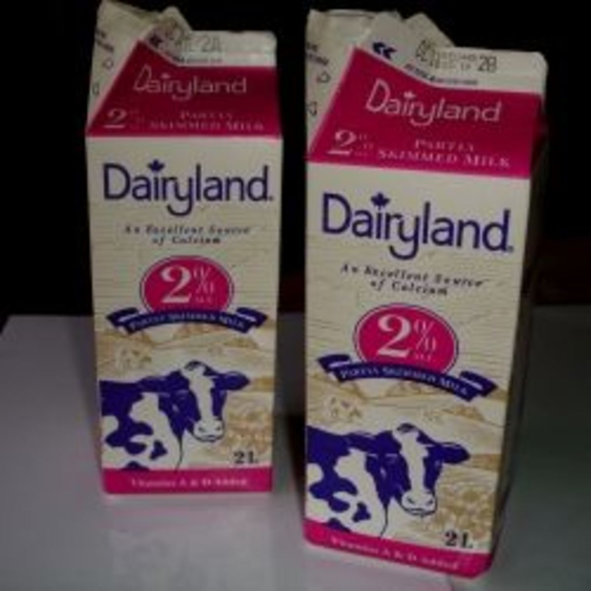 Projects for Recycling Milk Cartons