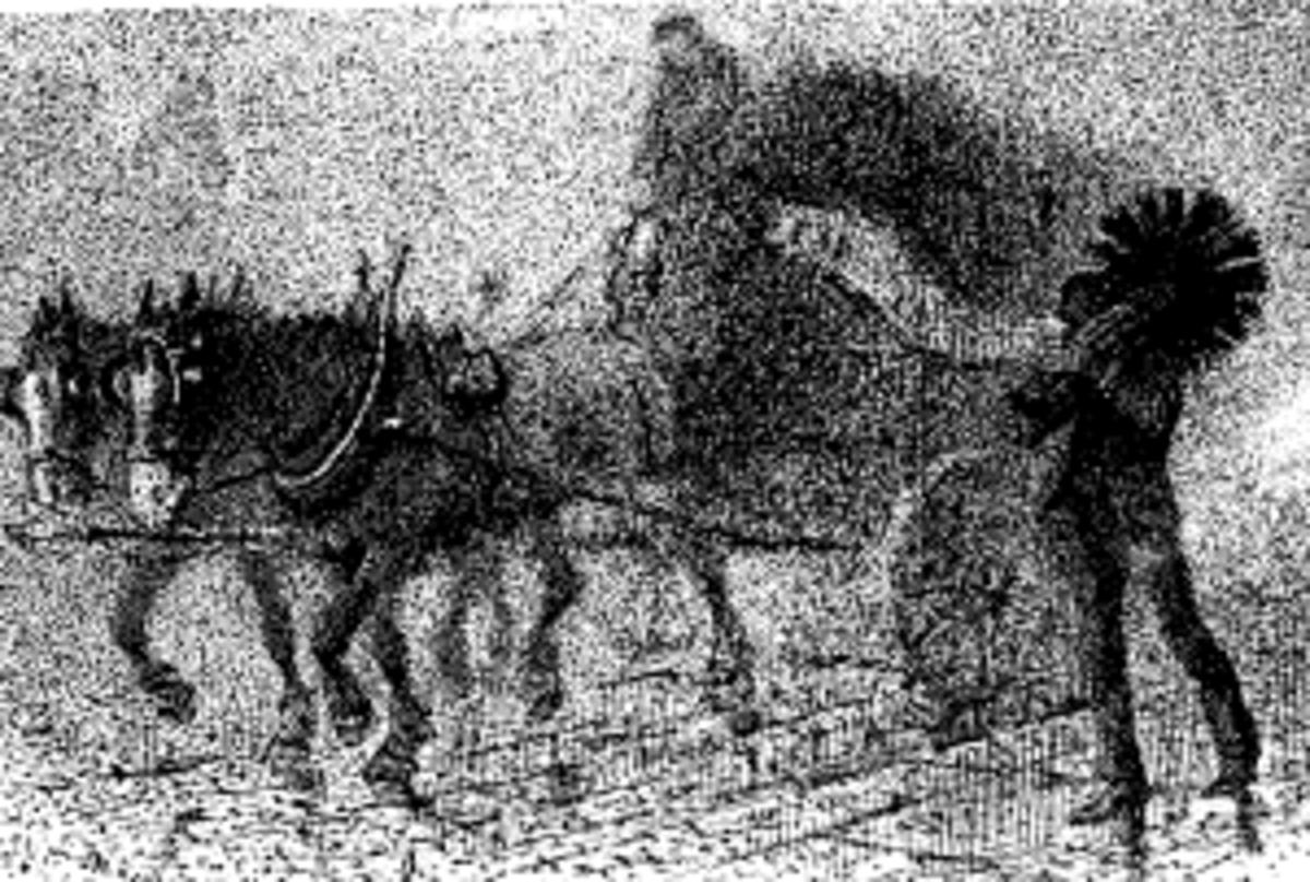 London fog (Punch1889)